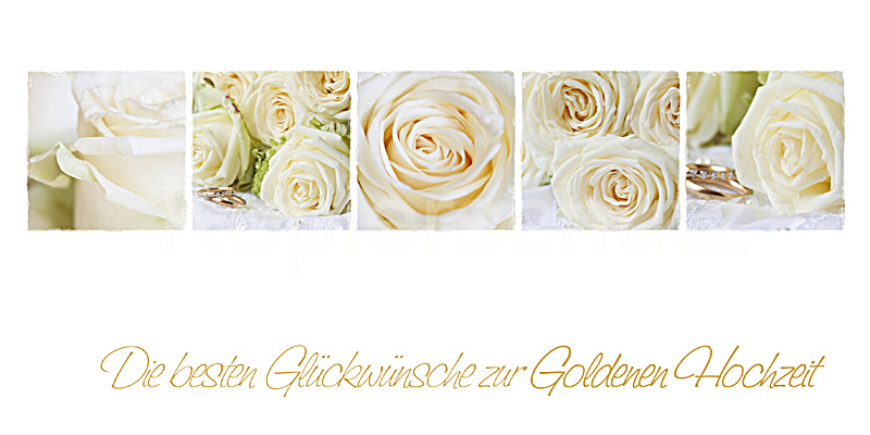 goldene hochzeit wei e rosen www stimmungs. Black Bedroom Furniture Sets. Home Design Ideas