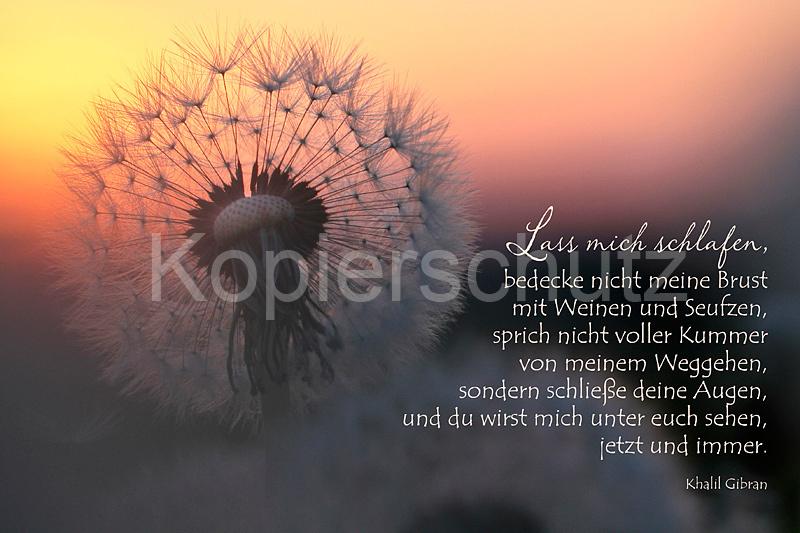 Khalil Gibran Gedichte Trauer Khalil Gibran Der Prophet