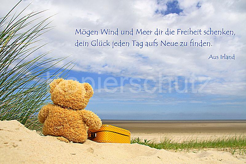 Mögen Wind Und Meer..., Teddy Am Meer